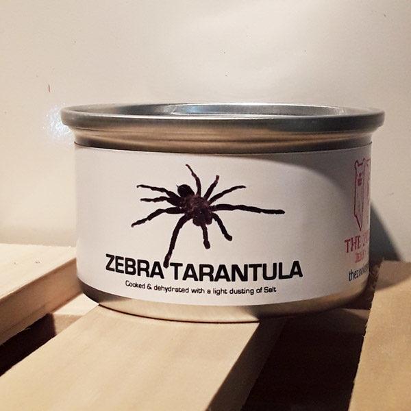 Goodies Gone Wild-Zebra Tarantula