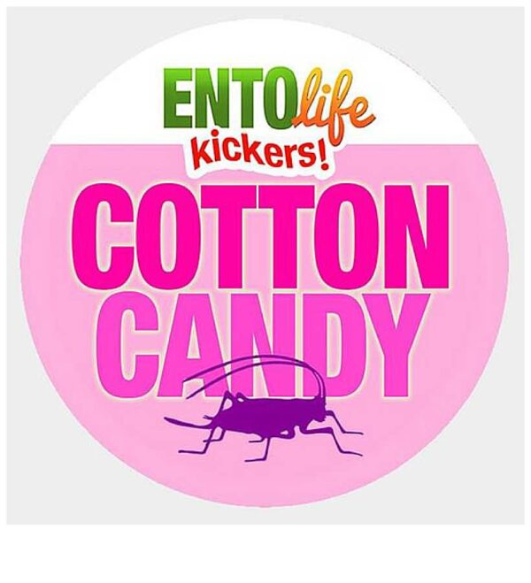 EntoLife Kickers – Cotton Candy Crickets