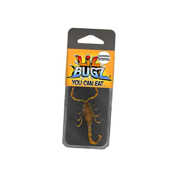 Lil Bugz – Scorpion